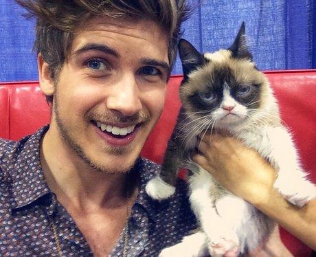 Joey Graceffa and internet cat Grumpy Cat